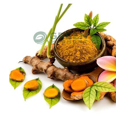 Turmeric Powder Produk From Green Harmony Indonesia Online Store